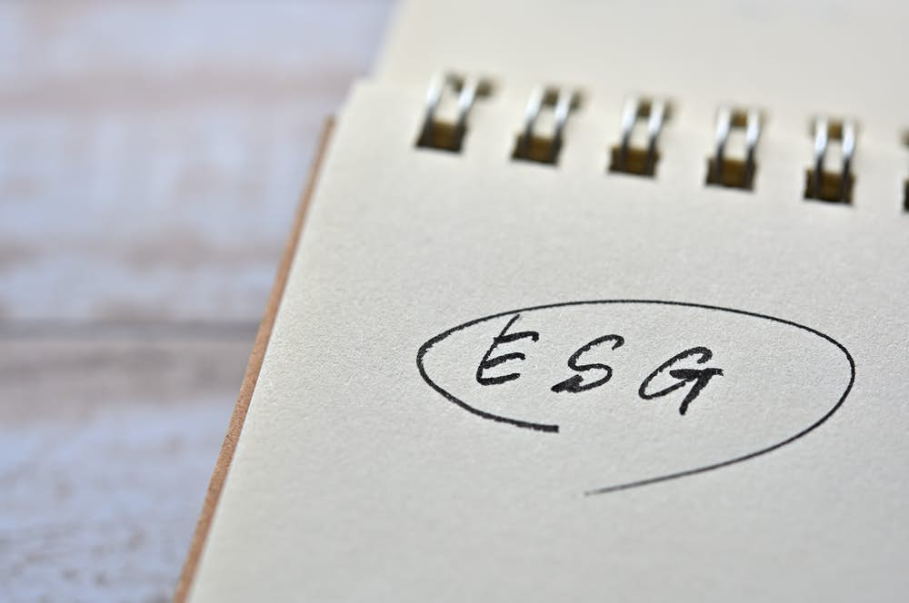 The New Kids on the Block: What should be made of ESG